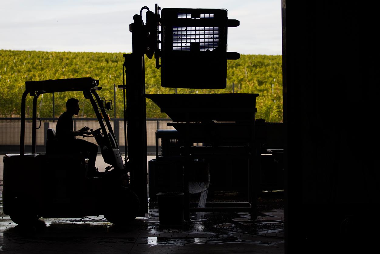 https://www.tua.wine/imagens/13/Quinta-dos-Castelares_final_02.jpg
