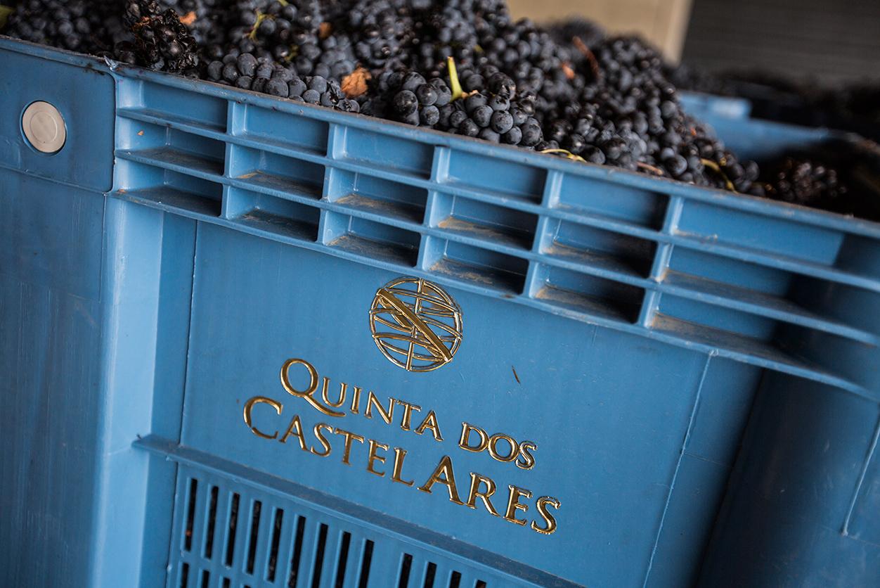 https://www.tua.wine/imagens/13/Quinta-dos-Castelares_final_05.jpg
