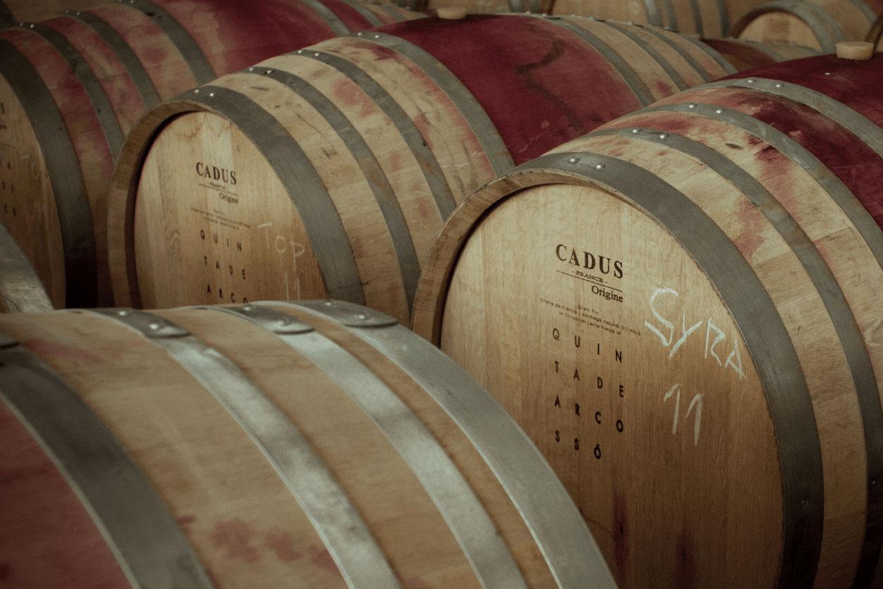 https://www.tua.wine/imagens/13/arcosso05.jpg
