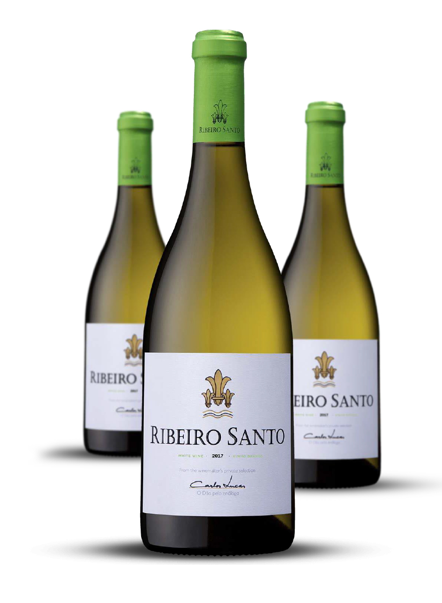 Ribeiro Santo Branco